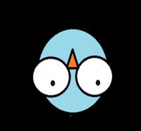 madár_színes5_transparent_down