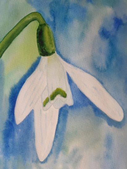 Hóvirág festése