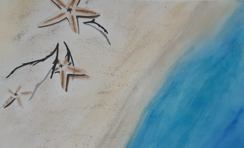 Tengeri csillag akvarell