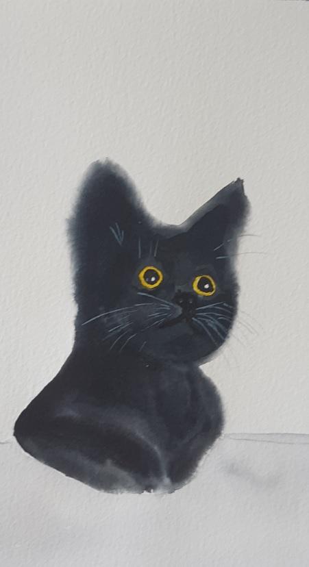 fekete cica akvarell