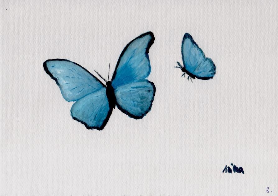pillangók gouache festő tanfolyam